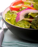 Healthy fresh salad with a light vinaigrette Stock Image