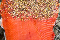 Healthy fresh salmon fillet with spices. Healthy fresh salmon fillet dressed with spices on a metal grill ready for barbecuing over a fire in a close up view Stock Photography