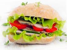 Healthy Fresh sandwich Stock Photos