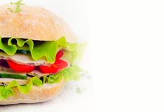 Healthy Fresh sandwich Stock Images