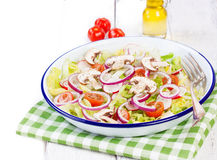 Healthy fresh summer salad with letucce, radish, cherry tomatoes, red onion and champignons with italian herbs Royalty Free Stock Image