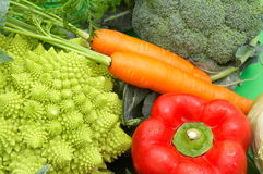 Healthy fresh vegetables. Set of healthy fresh vegetables stock photos