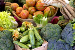 Healthy, fresh vegetables Stock Photography