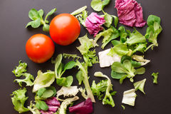 Healthy fresh vegetables tomatoes and greens on a dark textura. L background Stock Photography