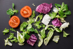 Healthy fresh vegetables tomatoes and greens on a dark textura. L background Stock Images