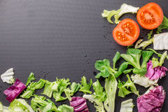 Healthy fresh vegetables tomatoes and greens on a dark textura. L background Royalty Free Stock Photo