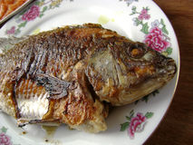 Grilled crucian fish. Asian Chinese grilled crucian fish royalty free stock photo