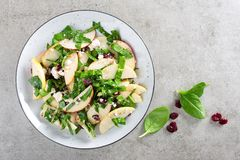Healthy fruit and berry salad with fresh apples, cranberries, walnuts, italian ricotta cheese and spinach leaves. Delicious and nu. Tritious diet dish for Stock Photo