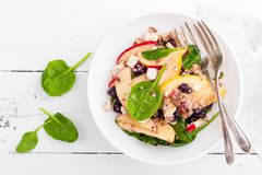 Healthy fruit and berry salad with fresh apples, cranberries, walnuts, italian ricotta cheese and spinach leaves. Delicious and nu. Tritious diet dish for Stock Photos