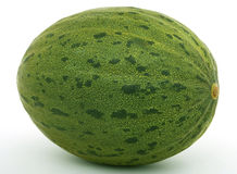 Healthy fruit melon Royalty Free Stock Image