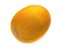 Healthy fruit melon Royalty Free Stock Images