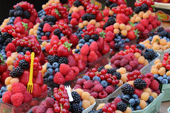 Healthy fruit salad full of vibrant colors Royalty Free Stock Photos