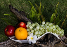 Healthy fruits Royalty Free Stock Images