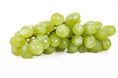 Healthy fruits Green wine grapes with  white background. Unwashed big wine green grapes on white background Stock Photos