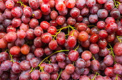 Healthy fruits Red wine grapes Stock Photos