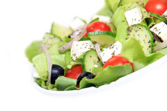Healthy garden fresh salad Stock Photo