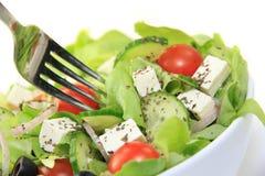 Healthy garden fresh salad Stock Images