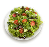 Healthy garden salad Royalty Free Stock Photo