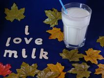 Healthy glass of milk. A healthy glass of cold fresh milk  with a blue straw and autumn leaves ,set with a blue background with words saying I love milk Royalty Free Stock Image