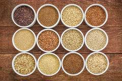 Healthy, gluten free grains collection. (quinoa, brown rice, millet, amaranth, teff, buckwheat, sorghum) , top view of small round bowls against rustic wood Stock Image