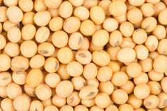Healthy Grains Soybean Royalty Free Stock Photography