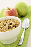 Healthy granola and fresh fruits Stock Image
