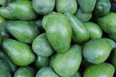Healthy green avocados. A collection of  green avocados Royalty Free Stock Photography