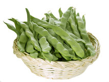 Healthy green beans Royalty Free Stock Images