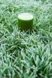 Healthy green detox juice Stock Photo