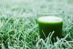 Healthy green detox juice Royalty Free Stock Photography