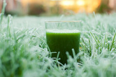 Healthy green detox juice Royalty Free Stock Images