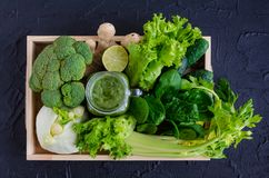 Healthy green detox smoothie Stock Images