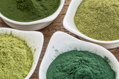 Healthy green dietary supplements Royalty Free Stock Photos