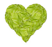 Healthy green heart made with green leaves Royalty Free Stock Photography