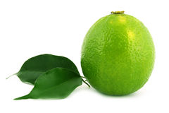 Healthy green lime Stock Image