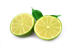 Healthy green lime. Fruit isolated on white royalty free stock photography
