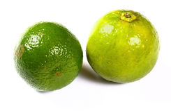 Healthy green lime fruit Stock Photography