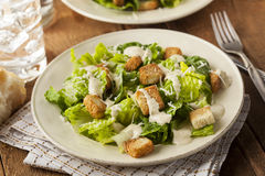 Healthy Green Organic Caesar Salad Royalty Free Stock Photos