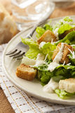 Healthy Green Organic Caesar Salad Royalty Free Stock Photography