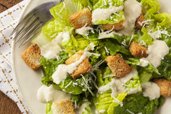 Healthy Green Organic Caesar Salad Stock Images