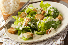 Healthy Green Organic Caesar Salad Royalty Free Stock Image