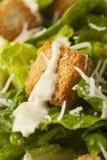 Healthy Green Organic Caesar Salad Stock Photos