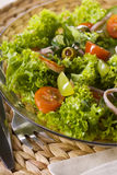 Healthy green salad Stock Image