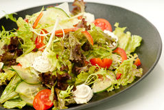 Healthy green salad on the black plate Royalty Free Stock Image