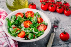 Healthy green salad bowl with tomato and mozzarella on rustic background. Healthy green salad bowl with tomato and mozzarella Royalty Free Stock Images