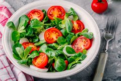 Healthy green salad bowl with tomato and mozzarella on rustic background. Healthy green salad bowl with tomato and mozzarella Royalty Free Stock Photos