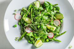 Healthy green salad with mix of vegetables Royalty Free Stock Photos