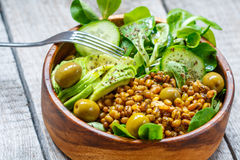 Healthy green salad with mung beans. Royalty Free Stock Photo