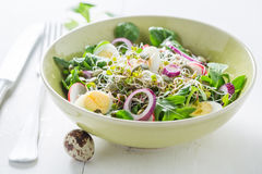 Healthy green salad with onion, quail egg and sprouts Stock Photography