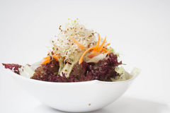 Healthy green salad. With soy bean sprouts, chicory and carrots Stock Photo